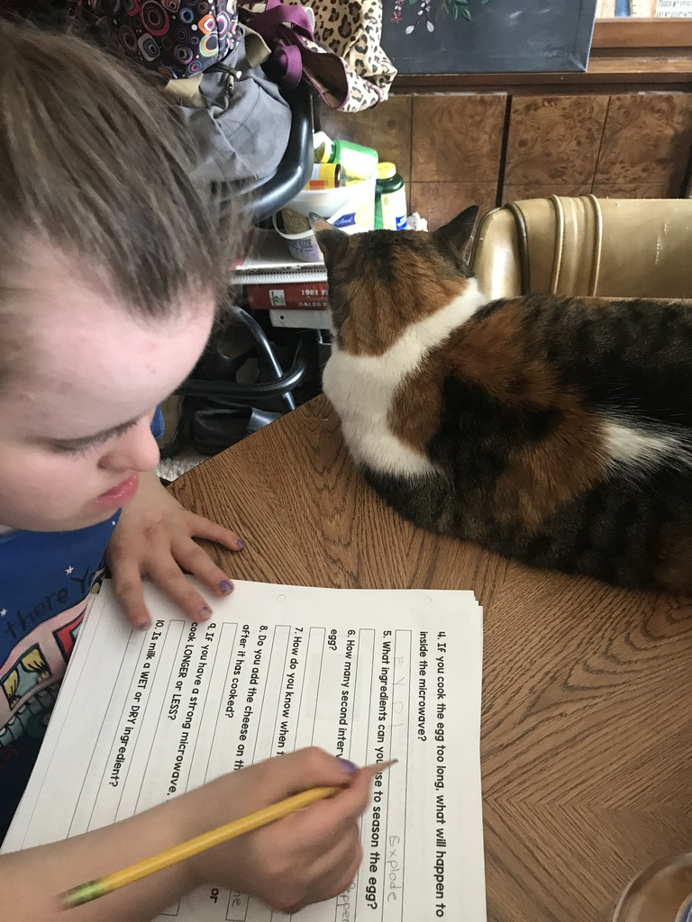 female student doing school work with a cat